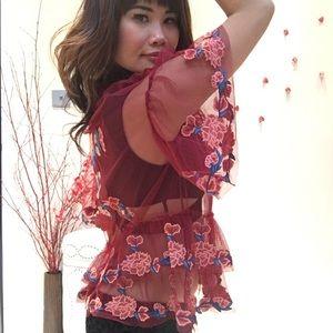 ✨NWOT Zara Women Floral Embroidery Maroon Mesh Top